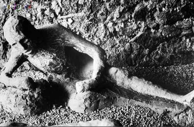 pompeii-victim-تاریخ