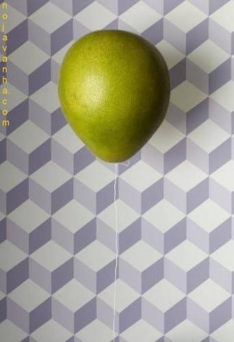 Creativity.nojavanha (5)