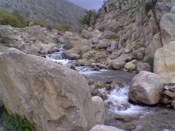 چشمه آب پینه (1)