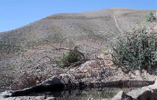 چشمه آب پینه (2)