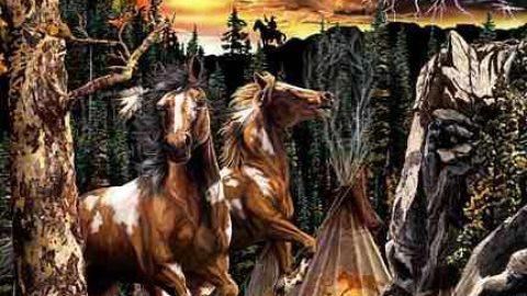 چند اسب؟