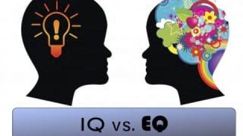 IQ یا EQ، کدام مهمتر است؟