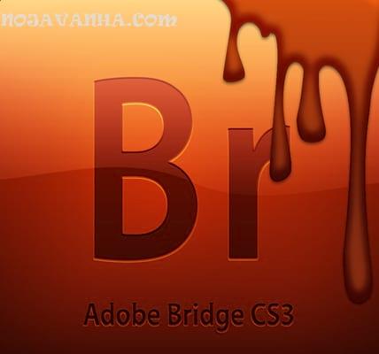 Adobe Bridge CS3 dirty