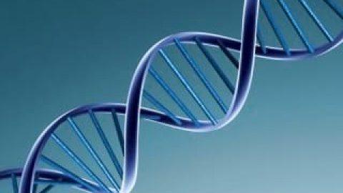 چقدر درمورد DNA می دانید؟
