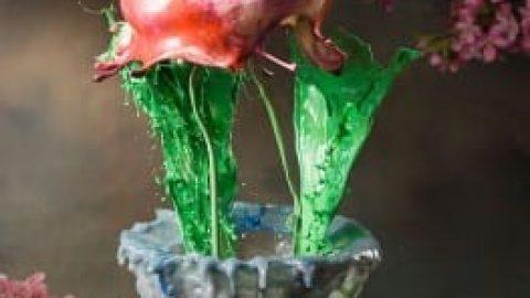 ایجاد گل با پاشیدن آب و مواد رنگی