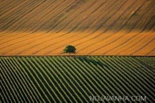 عکاسی هوایی40