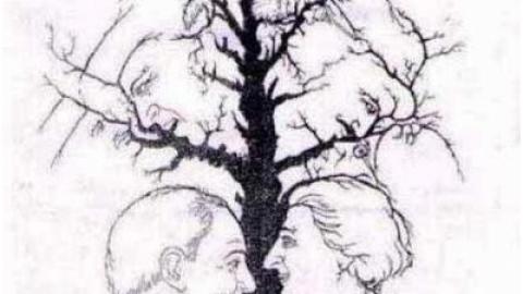 چند چهره می توانید پیدا کنید؟