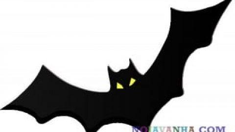 خفاش مرموز!