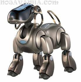 ربات-robo1