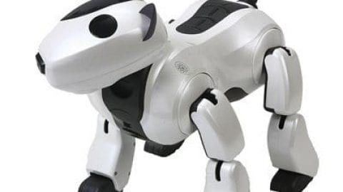 نقش روبات ها در زندگی ما