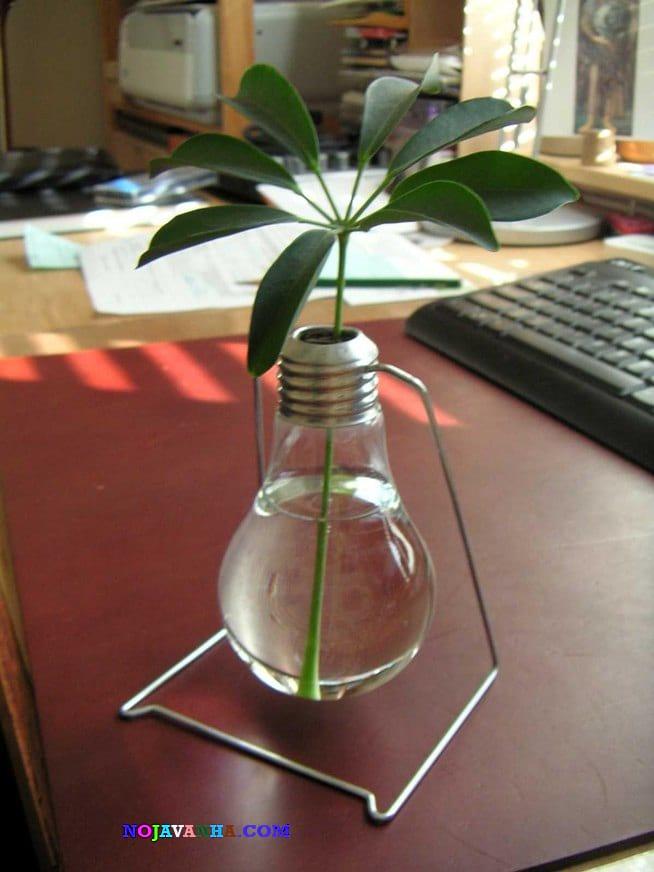 گلدان با لامپ سوخته