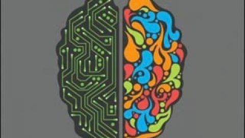 تحقیقات جدید، شخصیت راست مغز و چپ مغز را رد کرد