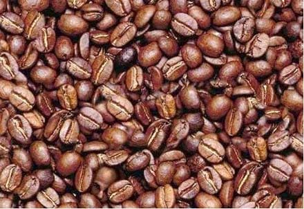 تست هوش (تصویری در دانه های قهوه)