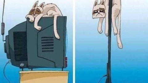 کاریکاتور دردسرهای پیشرفت تکنولوژی