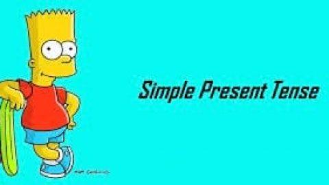 زمان حال ساده و فعالیت ها روزمره