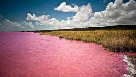 دریاچه صورتی پدیده ای شگفت انگیز در غرب آفریقا