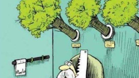 پدر بزرگ درخت ها رو قطع نکن، بچۀ من اکسیژن میخواهد