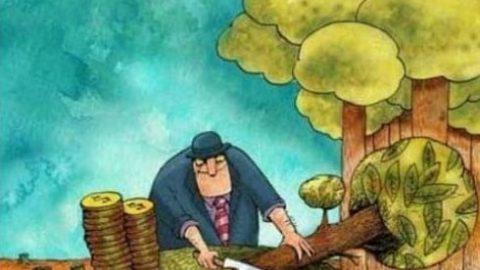 اکسیژن بهتر است یا ثروت؟