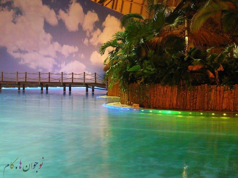 tropical_island_81
