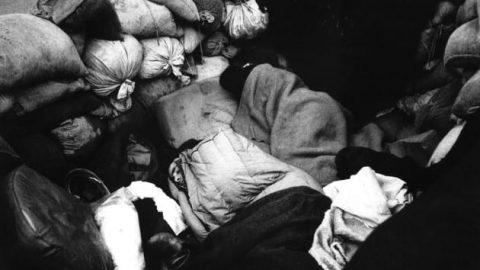 عکاسی مستند؛ نگاهی به عکس های انقلاب اسلامی