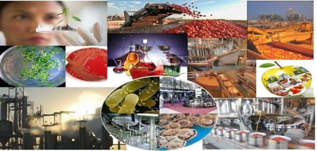 food-engineering