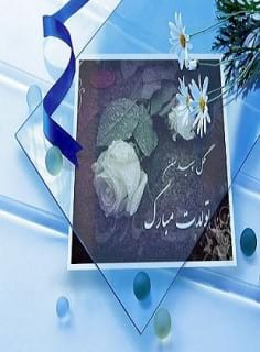 mohammades81