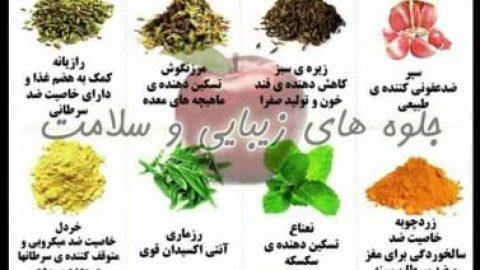 جلوه های زیبایی و سلامت