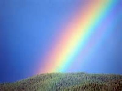 rainbow.nojavanha (11)