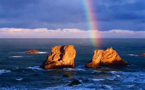 rainbow.nojavanha (3)