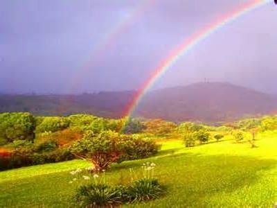 rainbow.nojavanha (6)