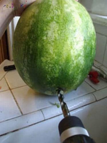 Watermelon.nojavanha (3)