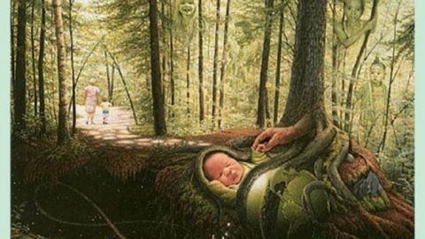 چند نفر را در جنگل می بینید ؟