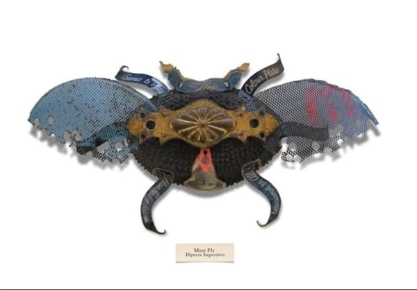 insect.nojavanha (19)