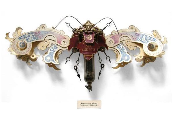 هنرنمایی با حشرات