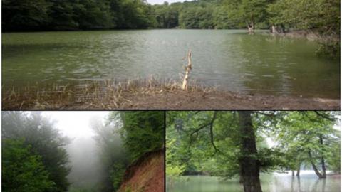 دریاچۀ میانشه