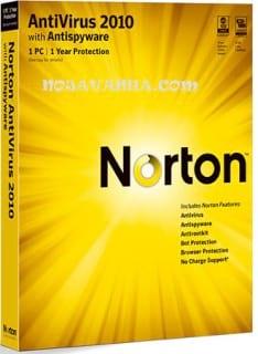 norton.nojavanha (4)