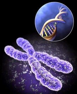 ژنتیک پزشکی