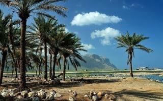 Socotra.nojavanha (34)