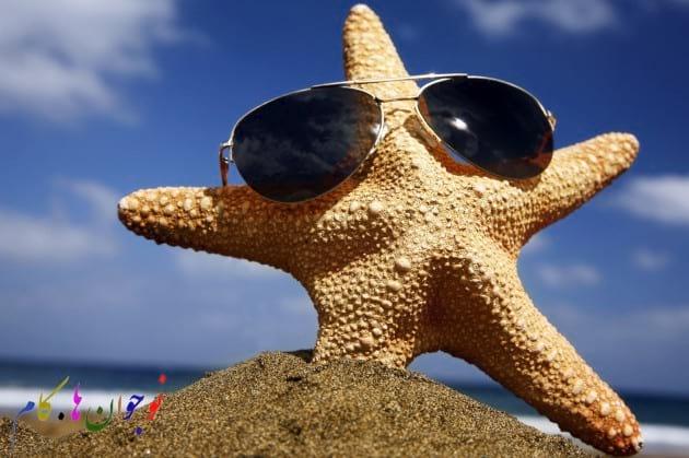 Starfish.nojavanha