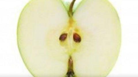 شما دانه هستید یا سیب؟