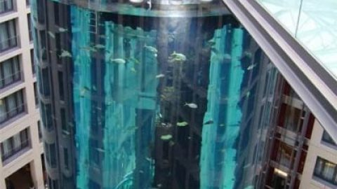 بزرگترین آکواریوم استوانه ای جهان