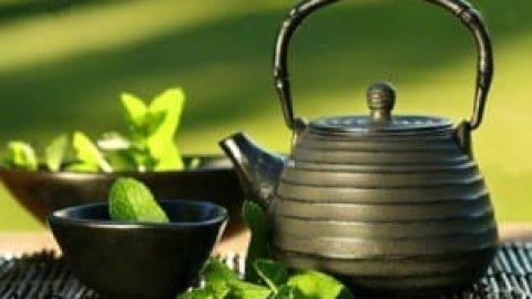 چای نعنا؛ انرژی زای طبیعی
