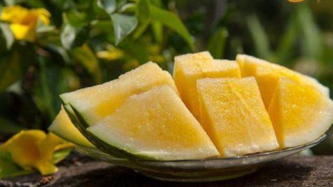 هندوانه نباتی (هندوانه زرد)