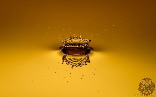 golden images.nojavanha (28)