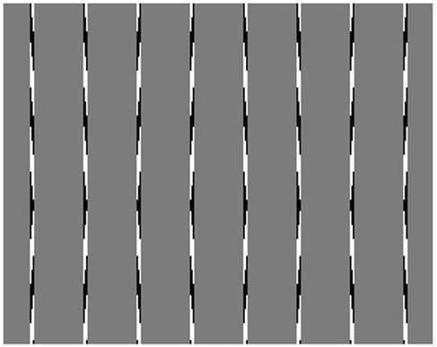 lines.nojavanha