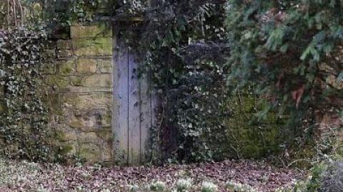 رمان باغ مخفی