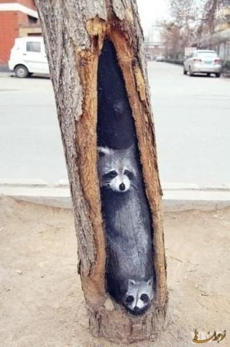Painting on tree trunks.nojavanha (1)