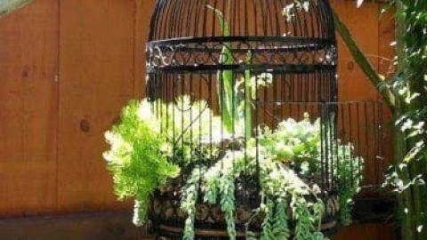 آشنایی تصویری با وسایلی که به عنوان گلدان میتوان به کار برد