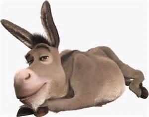 donkey-nojavanha(1)
