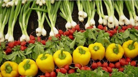 از مصرف میوه و سبزی غافل نشوید